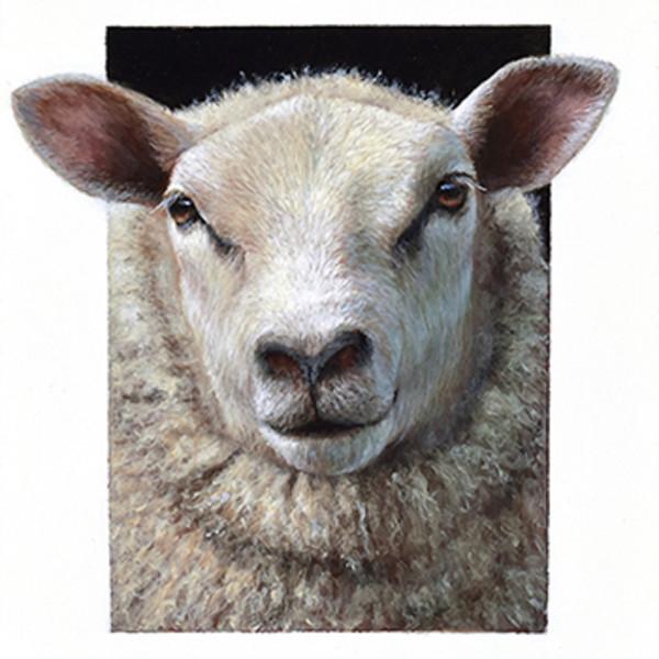 Alexandra Klimas - Miniature painting, Daisy the Sheep