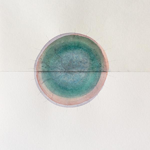 Mireille Gros, Fictional Plants 49, 2018