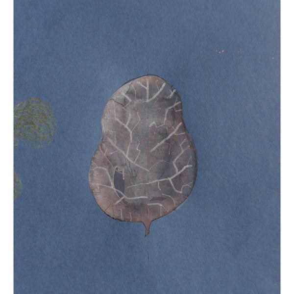 Mireille Gros, Fictional Plants 2, 2019
