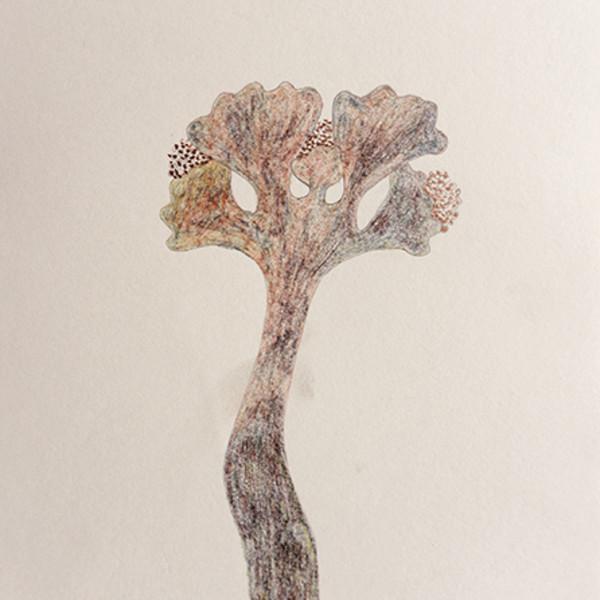 Mireille Gros, Fictional Plants 57, 2018