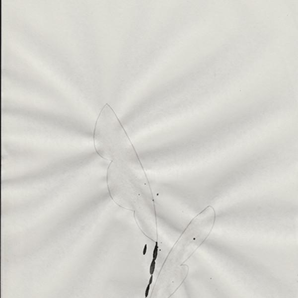 Mireille Gros, Fictional Plants 41, 2018