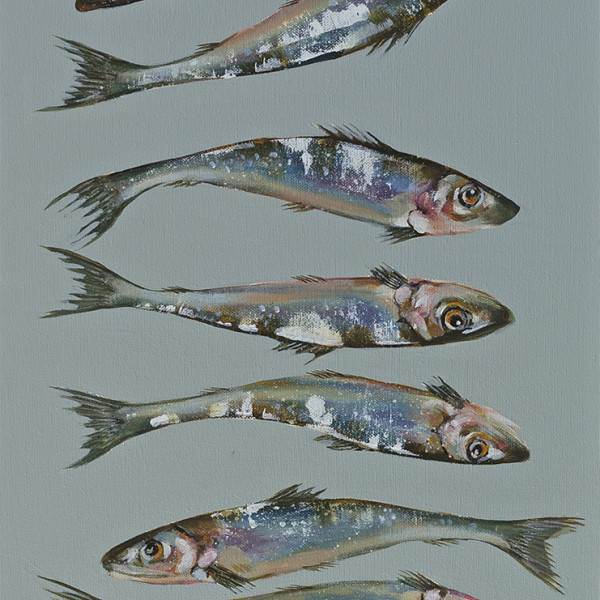 Caroline Cleave, A Dozen Sardines
