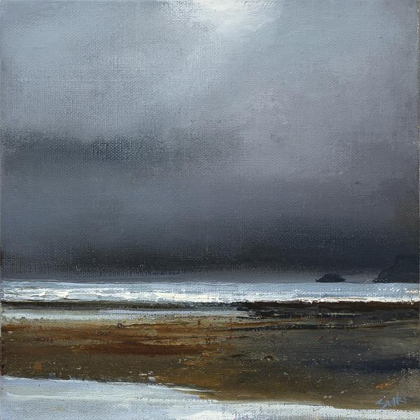 Suki Wapshott, Storm