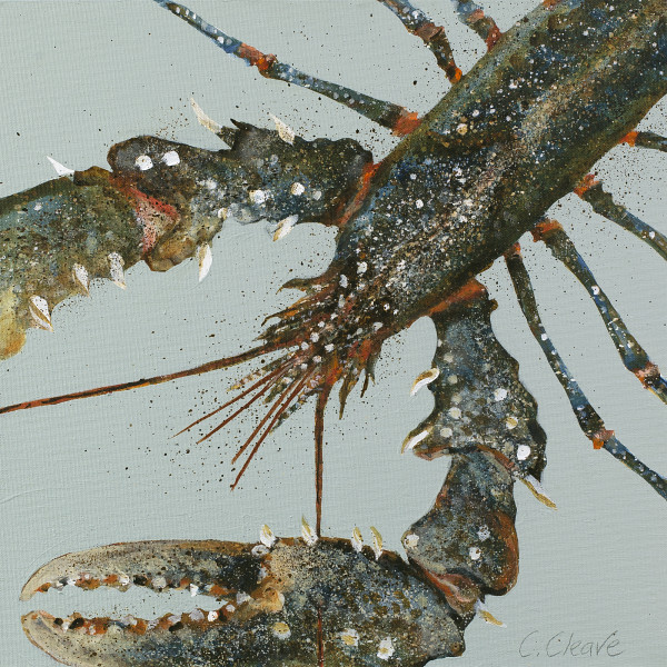 Caroline Cleave, Lobster Study II