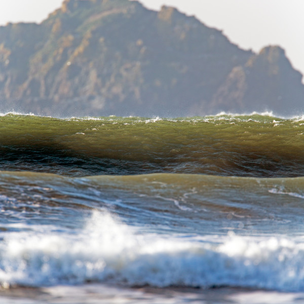 Nick Wapshott, Set Waves
