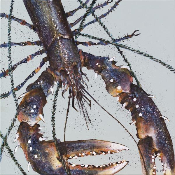 Caroline Cleave, Close Up Lobster