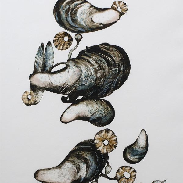 Caroline Cleave, Mussels II