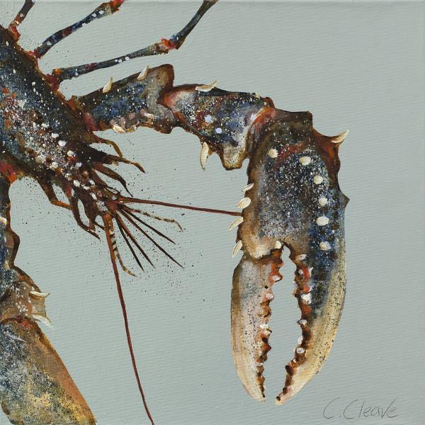 Caroline Cleave, Lobster Study I