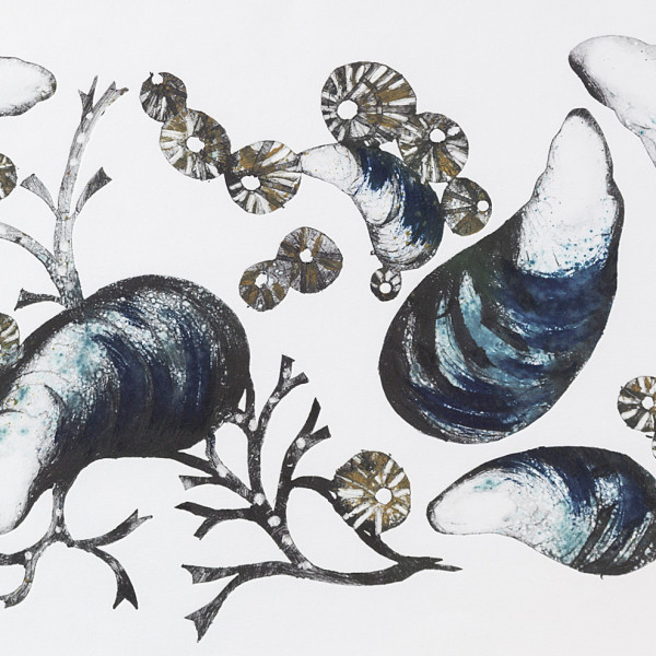 Caroline Cleave, Mussels & Limpets