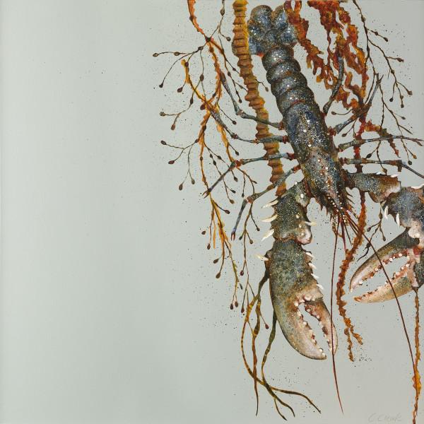 Caroline Cleave, Lobster in Seaweed