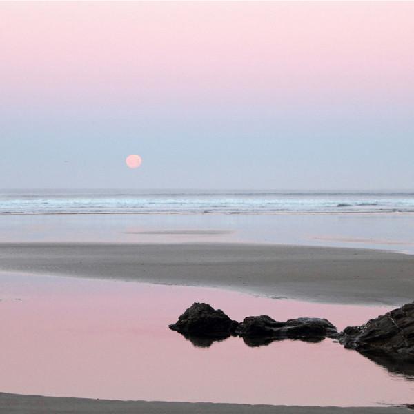 Nick Wapshott, Moonset