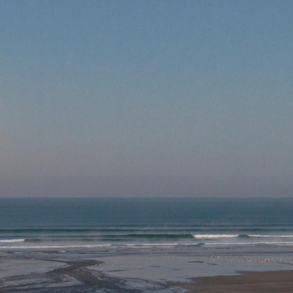 Nick Wapshott, Morning Lines