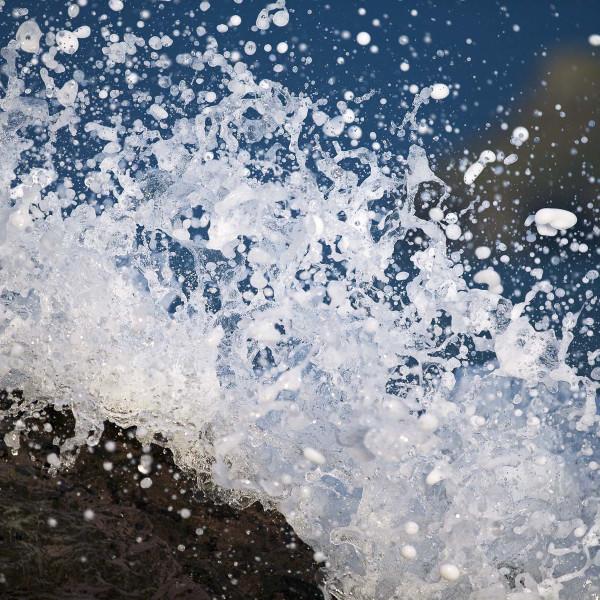 Nick Wapshott - Spray I