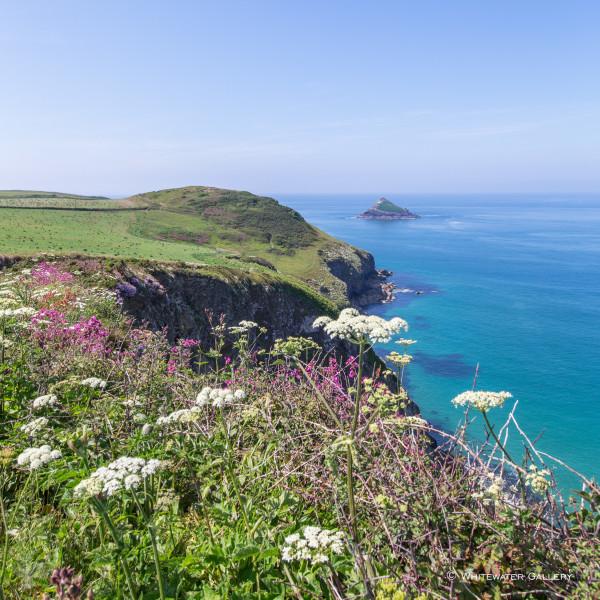 Nick Wapshott, Coastal Glory