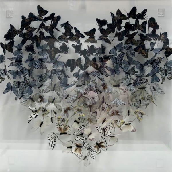 Michael Olsen - Heart