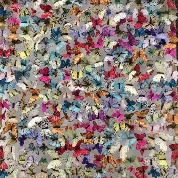 Michael Olsen - Martha's Flutter