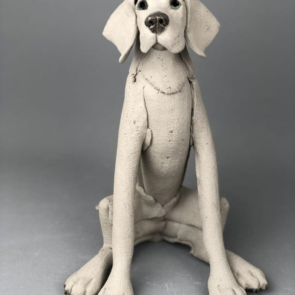 Virginia Dowe Edwards - Sitting Weimaraner , 2020