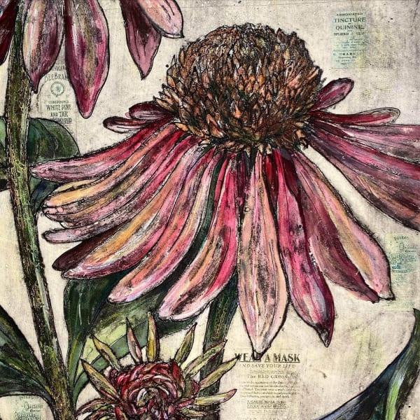 Vicky Oldfield - Echinacea Covid