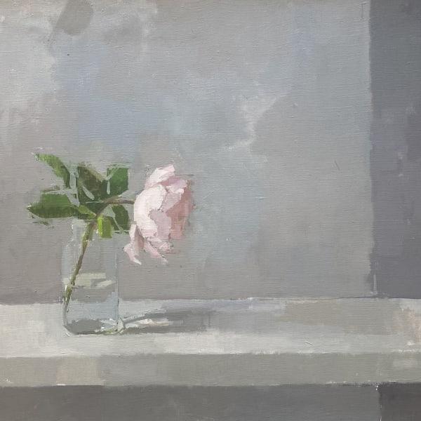 Sarah Spackman - Garden Rose, 2020