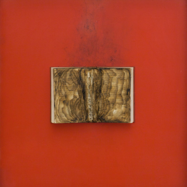 Bernard Aubertin - Livre brulé, 1974