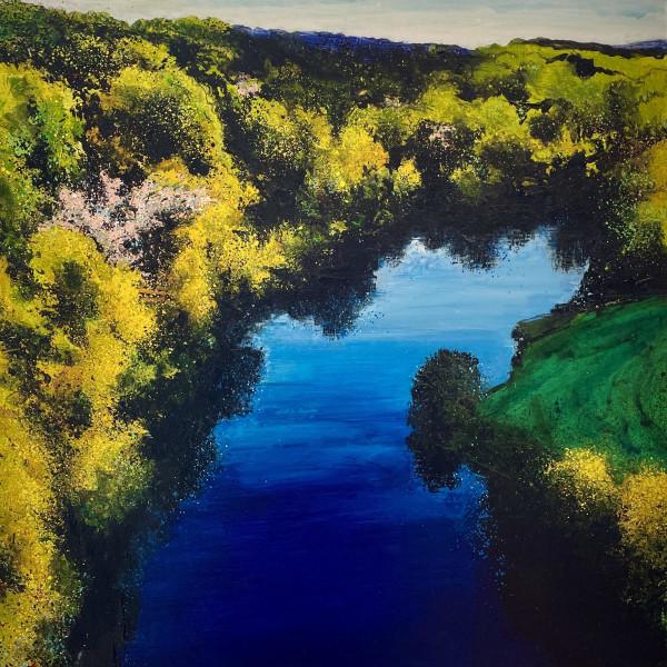 Rob Murray - Aerial Landscape (Arboretum)