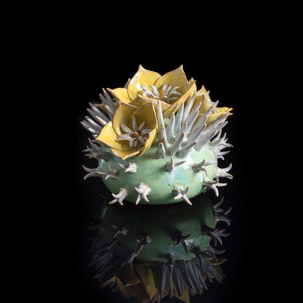 Frances Doherty - Yellow Texas Rose