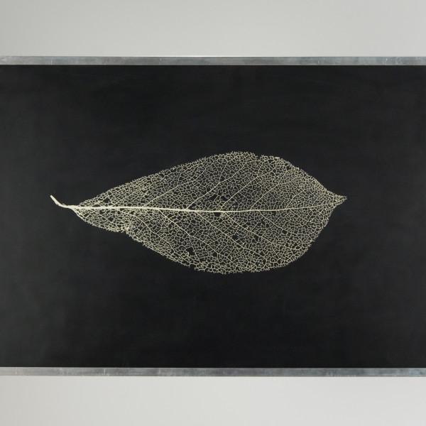 Mark Zirpel - Leaf, 2010