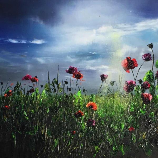 Kimberley Harris - Morning Breeze