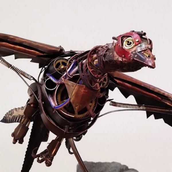 Ean Dawbarn - Pheasant