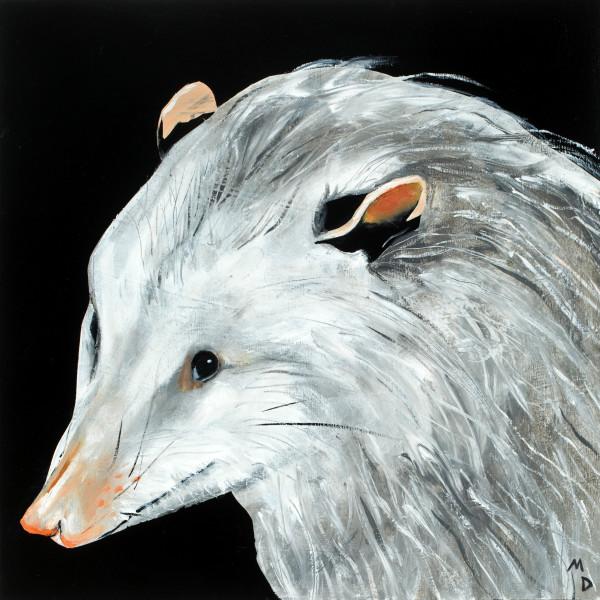 Matthew Dennison - Possum, 2020