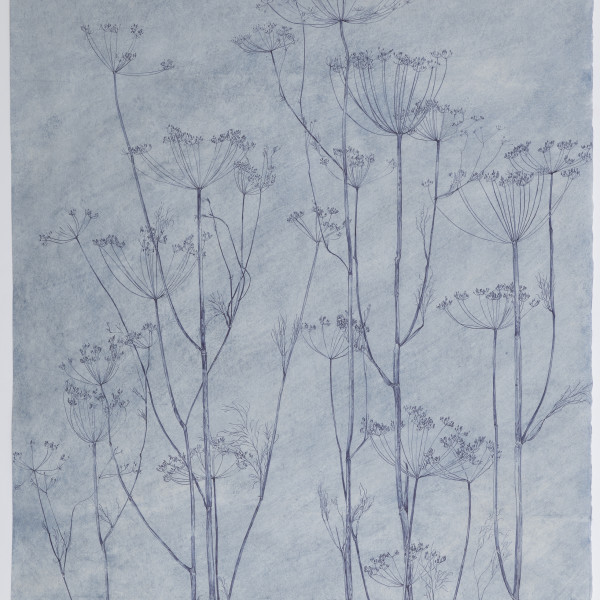 Sarah Horowitz - Blue Seed Heads, 2021