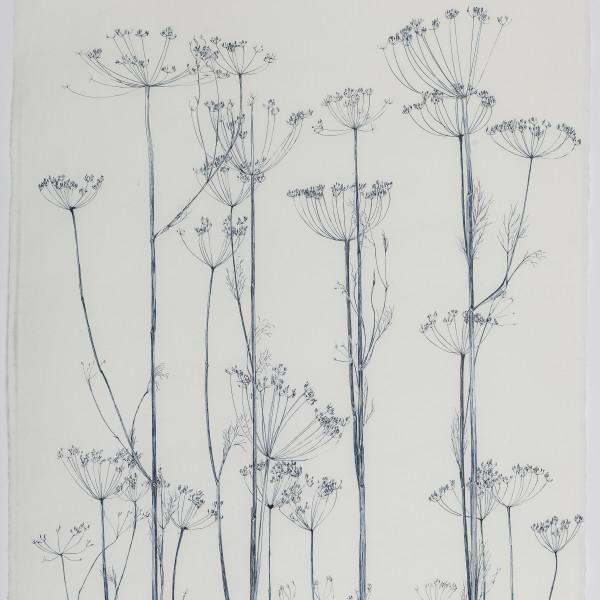 Sarah Horowitz - Seed Heads, 2021