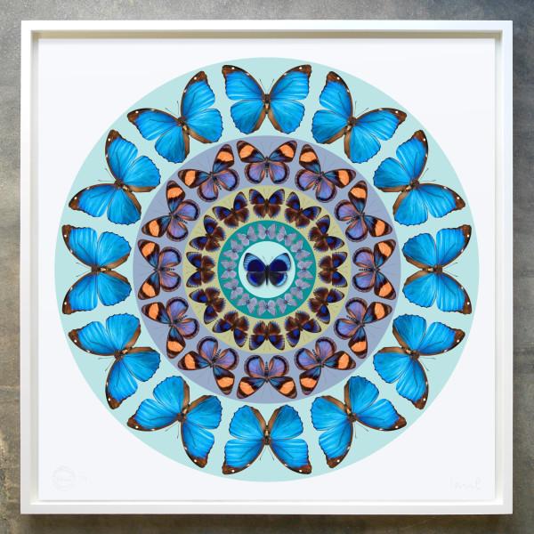 Iain Cadby, Target Mandala (Glacier Blue), 2020