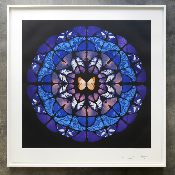 Damien Hirst, Dome (from the Sanctum series) , 2009