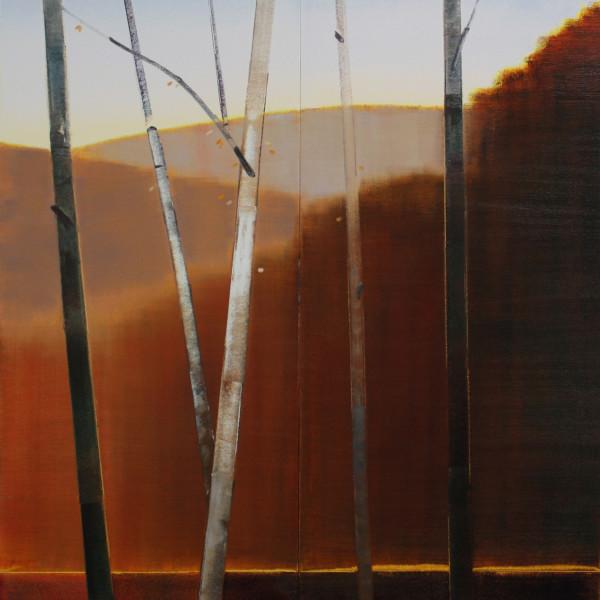 Stephen Pentak - 2017, II.I, 2017