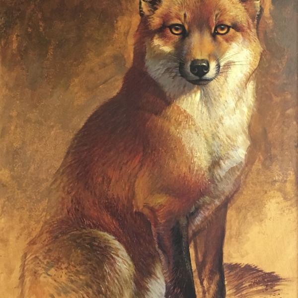 Ezra Tucker - Red Fox