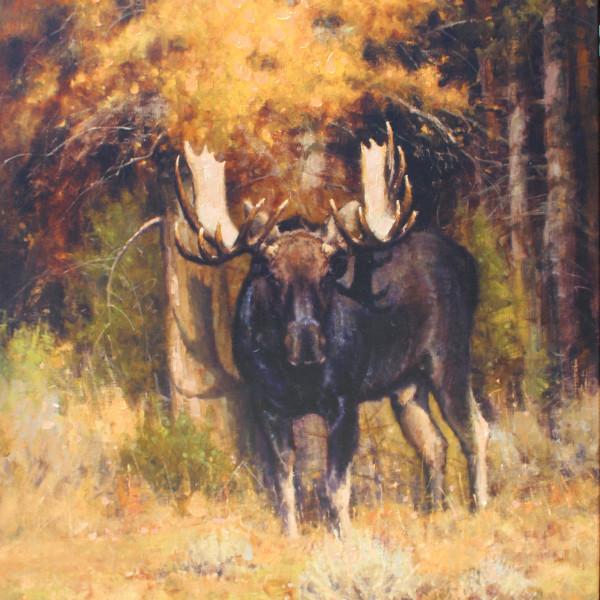 John DeMott - Moose