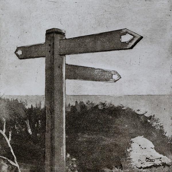 Sarah Seddon, Which Way II