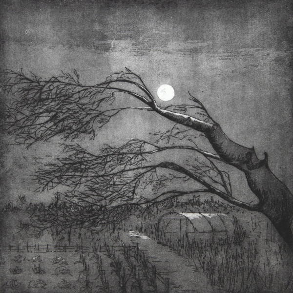 Sarah Seddon, A Winter's Night