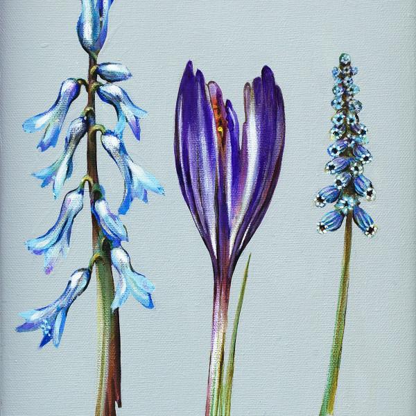 Caroline Cleave, Spring Flower Study