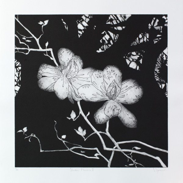 Sally Spens, Shadow Flowers II
