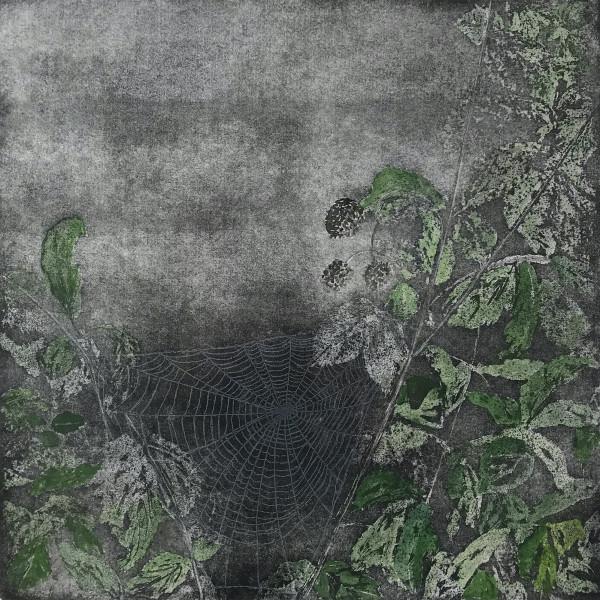 Sarah Seddon, Webs We Weave, Coloured Edition