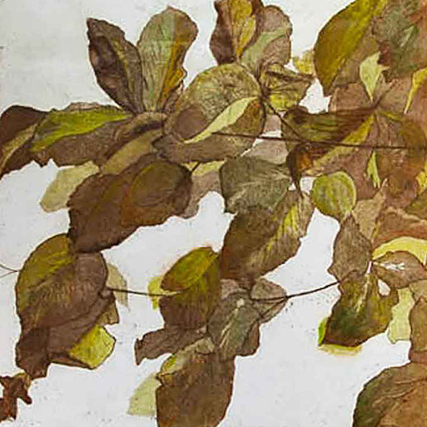Sarah Seddon, Autumn Leaves