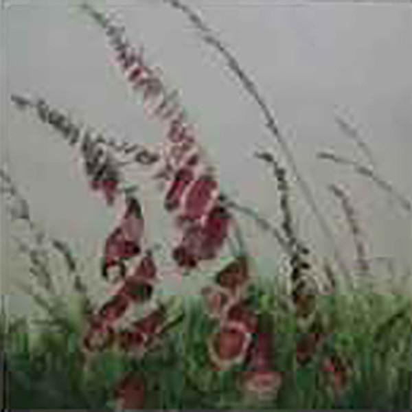 Sarah Seddon, Foxgloves