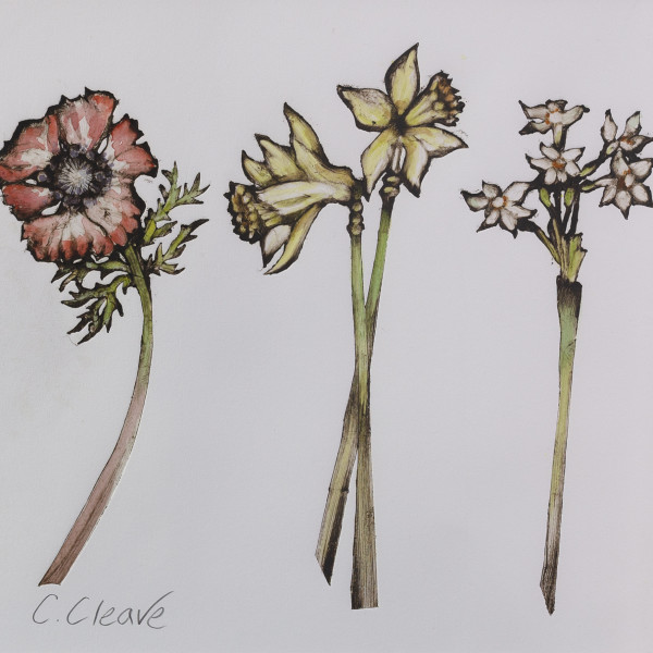 Caroline Cleave, Flower Trio