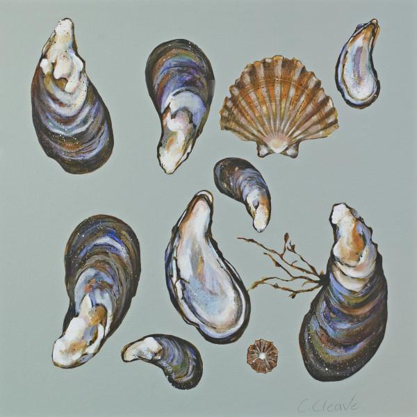 Caroline Cleave, Mussels III