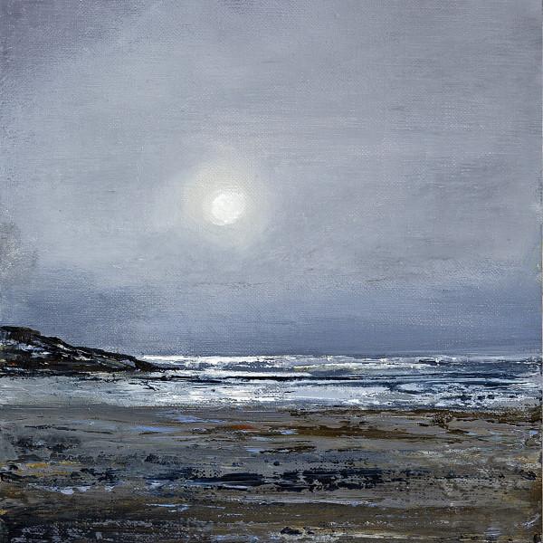 Suki Wapshott, Moonshine