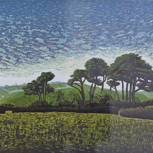 Peter Ursem, Trees above Cotehele