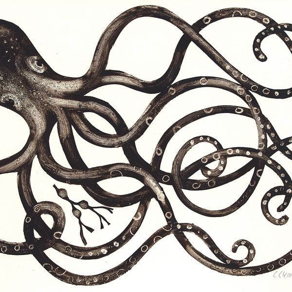 Caroline Cleave, Octopus