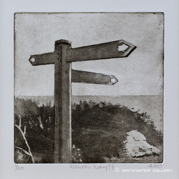 Sarah Seddon, Which Way II, 2017